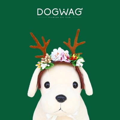 강아지 고양이 장식 꼬깔모자 왕관 꽃사슴