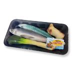 캣가든 캣닢 생선매운탕 참치 꽁치
