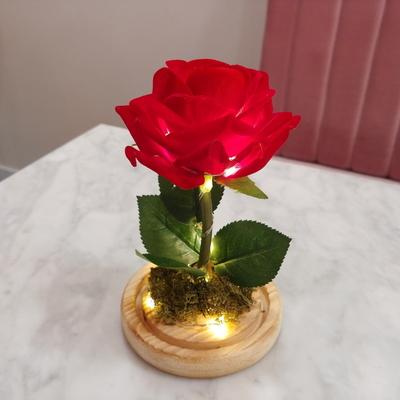 벨벳로즈 미녀와야수 무드등 어린왕자 장미꽃