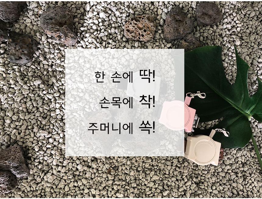 소형 2m 애견산책 자동리드줄 웨어리쉬 - 글로펫, 24,000원, 이동장/리드줄/야외용품, 리드줄