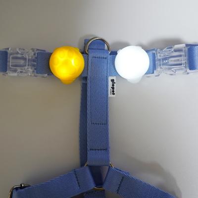 강아지 LED 블링커