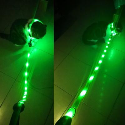 산책용 LED 목줄 리드줄 세트