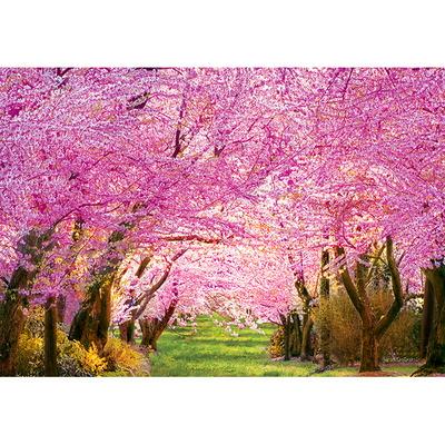 1000피스 직소퍼즐 - 벚꽃길