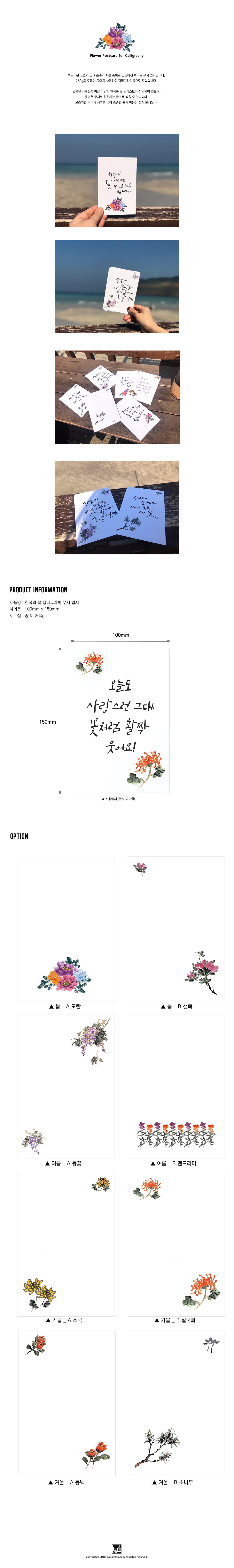 한국의 꽃 캘리그라피 무지엽서 (가을 소국) - 캘리아트컴퍼니, 1,800원, 엽서, 일러스트