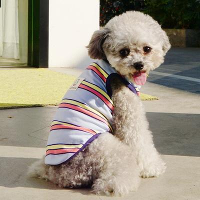 파스텔독 강아지 컬러 스트라이프 나시 티셔츠