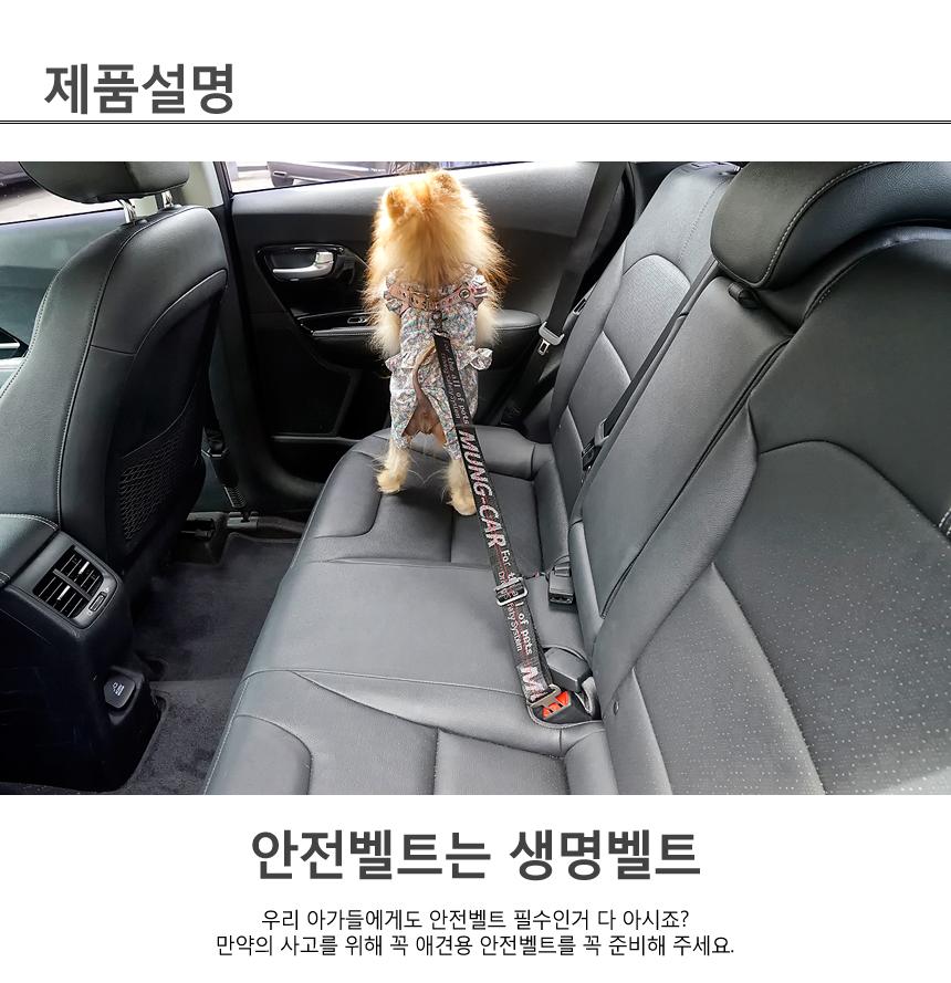멍카 프리미엄 애견 안전벨트 - 멍뭉스, 12,500원, 이동장/리드줄/야외용품, 이동가방