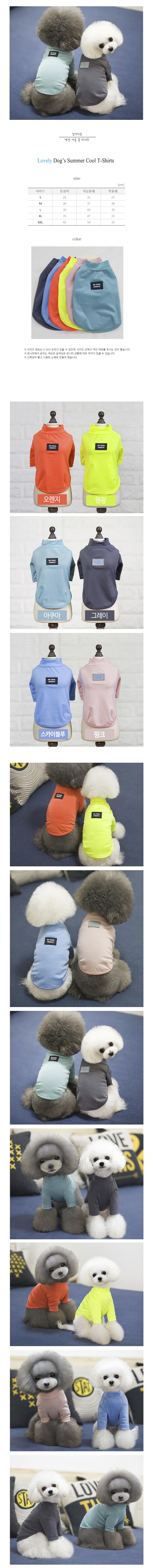 강아지 래쉬가드 쿨 티셔츠 아쿠아 - 멍뭉스, 9,900원, 의류/액세서리, 의류