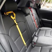 차량용 헤드걸이형 애견 안전 벨트