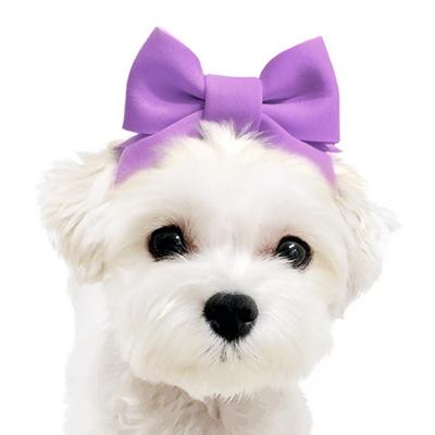 강아지 고양이 모자 통통리본 헤어밴드