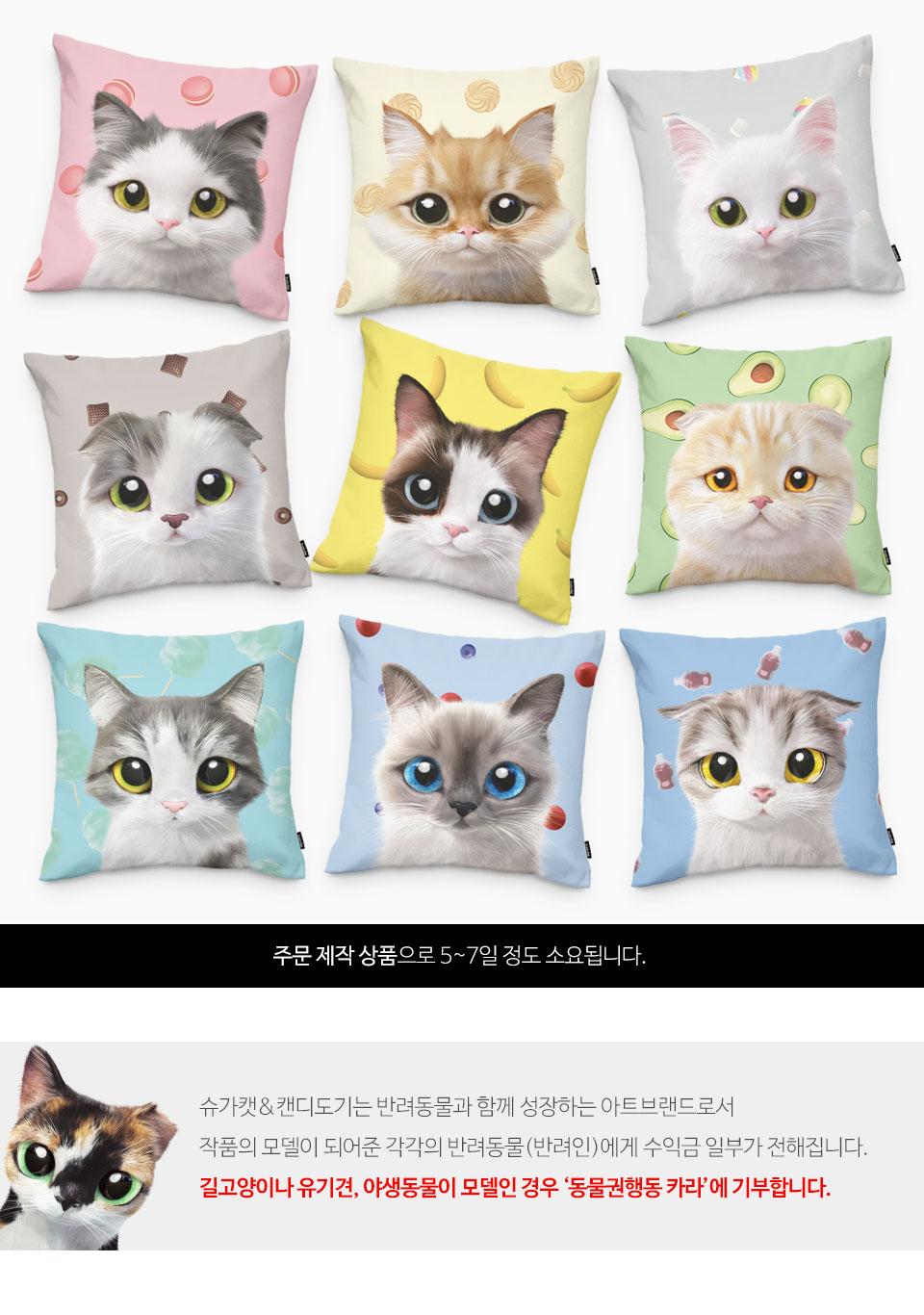 달이의 마카롱 쿠션 - 슈가캣 캔디도기, 25,000원, 쿠션, 캐릭터