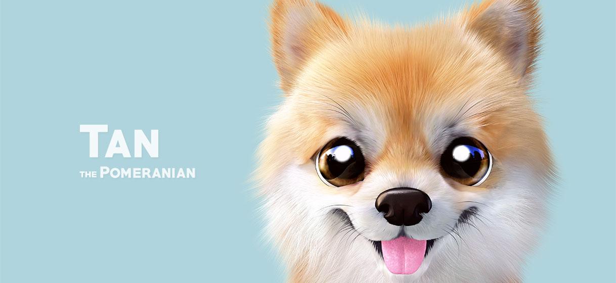 탄이 파우치 - 슈가캣 캔디도기, 15,000원, 메이크업 파우치, 지퍼형