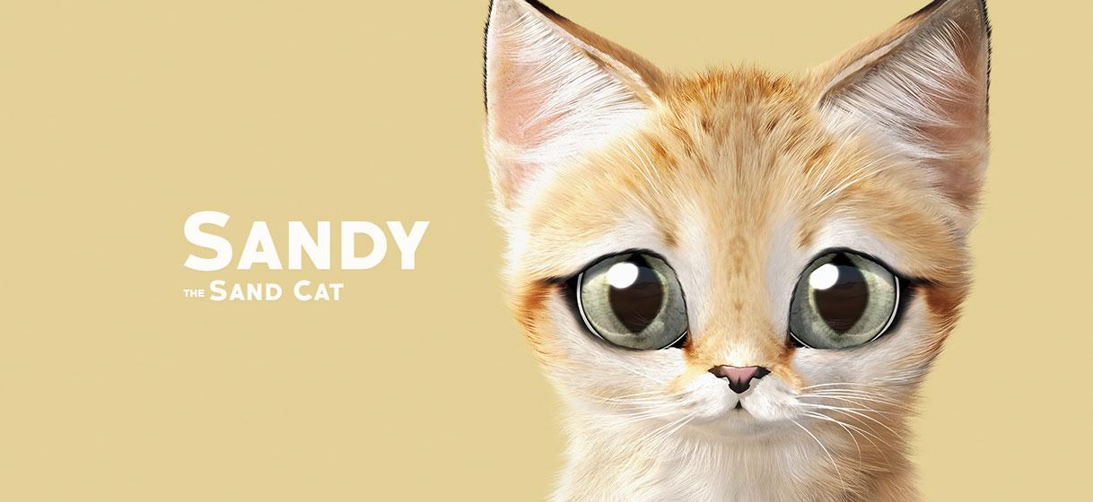 모래고양이 샌디 얼굴 아크릴키링 - 슈가캣 캔디도기, 10,000원, 열쇠고리/키커버, 디자인키홀더