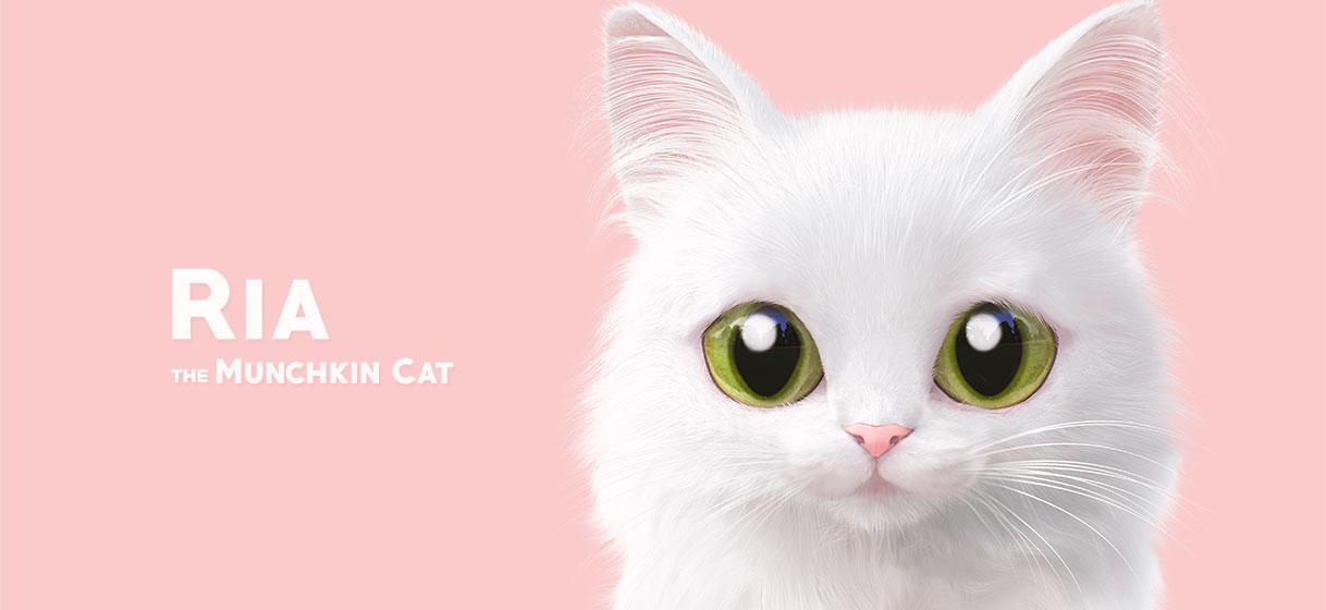 리아 얼굴 에어팟프로 TPU케이스 - 슈가캣 캔디도기, 13,500원, 이어폰, 이어폰 악세서리