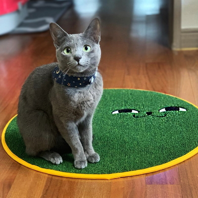 스크래쳐용 고양이 소환 러그 Green