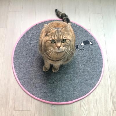 스크래쳐용 고양이 소환러그 gray