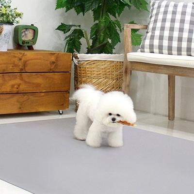 초코펫하우스 슬개골탈구예방 논슬립클린 생활매트 강아지롤매트