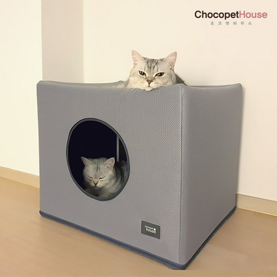 극강의 아늑한 고양이 숨숨집 향균 탈취 헬사클린 장영실상수상 365일 다기능캣하우스