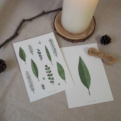 나뭇잎 엽서 6종 세트