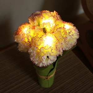 카네이션 LED 조명 (WP)