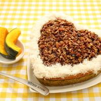 힐링펫 수제케익 소고기 케이크