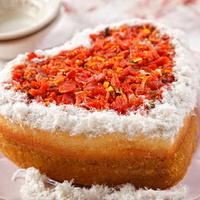 힐링펫 수제케익 연어 케이크