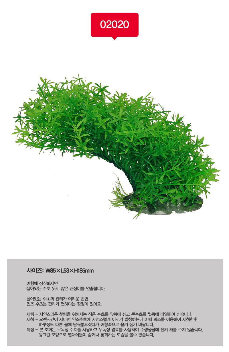 아마존 조화02020(15-20cm) - 스타릿1, 3,000원, 장식품, 수초