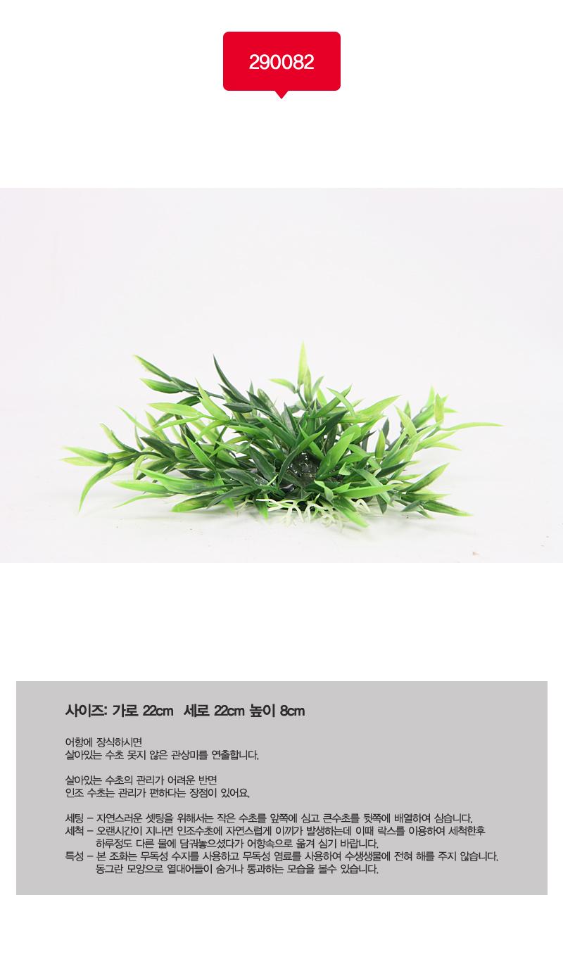 아마존 조화290082(8cm) - 스타릿1, 1,300원, 장식품, 수초