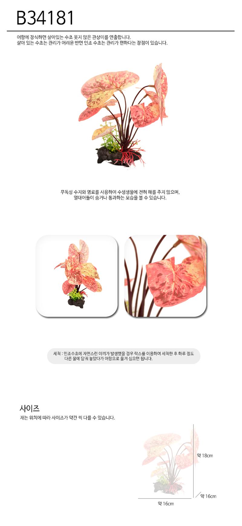 아마존 조화B34181(16cm) - 스타릿1, 5,000원, 장식품, 수초