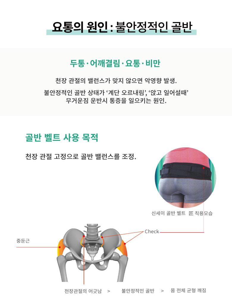 2중체결 골반벨트 M-L사이즈 (1개입) - 신세이, 63,000원, 스포츠용품, 보호장구