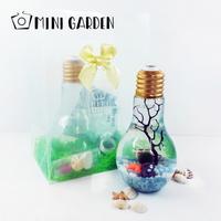 선물세트-전구 마리모 DIY 세트
